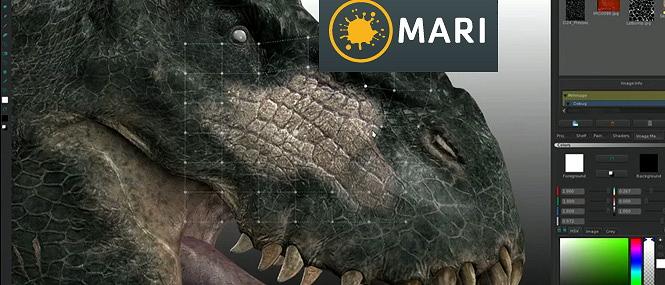mari-homepage