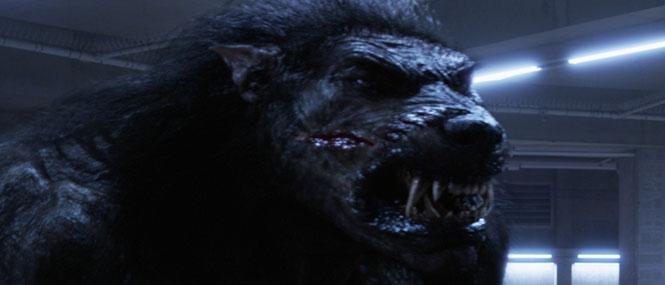 Go Back > Gallery For > Giant Werewolf In Underworld