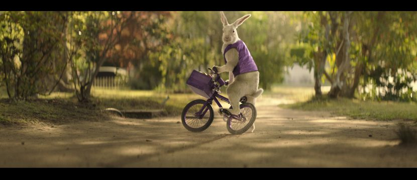 cadburry_bunny_cg