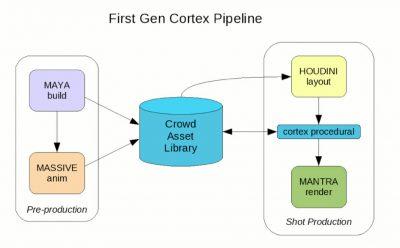 Cortex solution