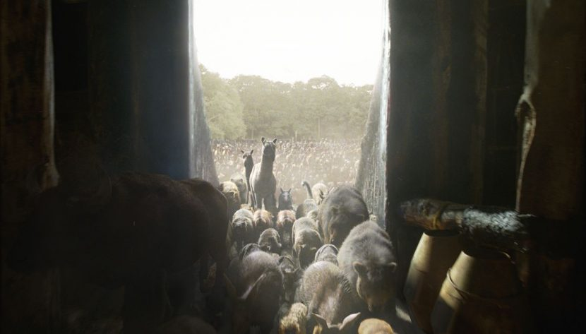The animals inside the ark.