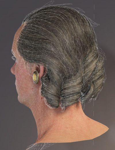 Basiluis hair - wire rig.