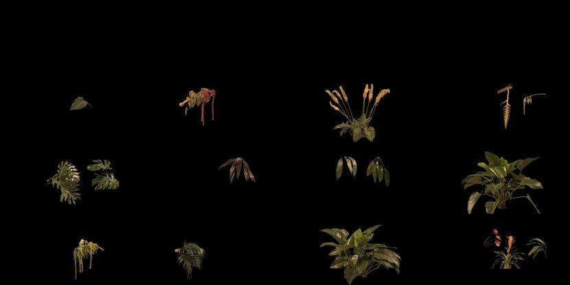CG foliage.