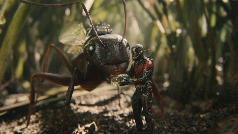 Ant-Man gets closer with his new friend.