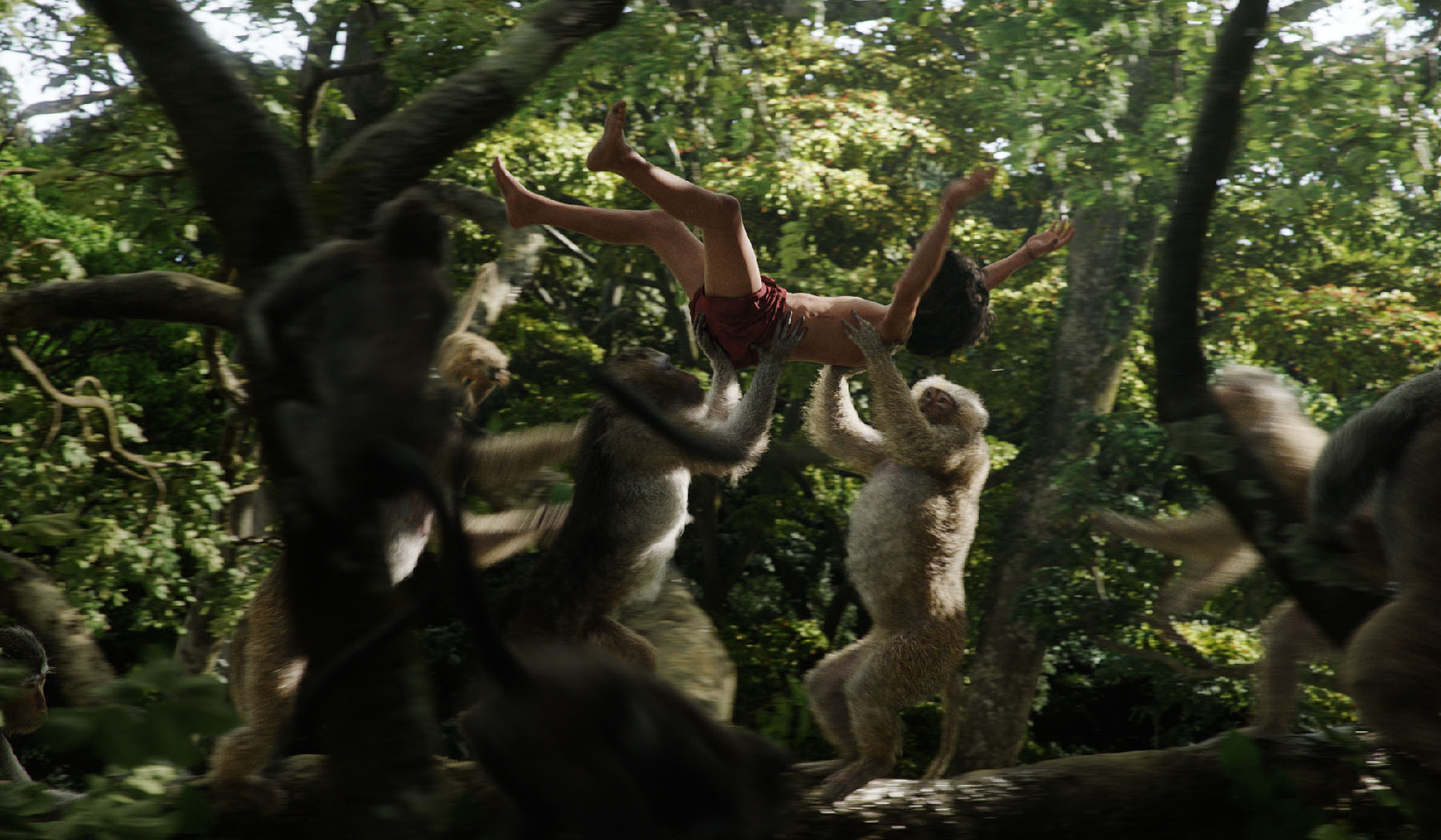 jungle dead end full movie download