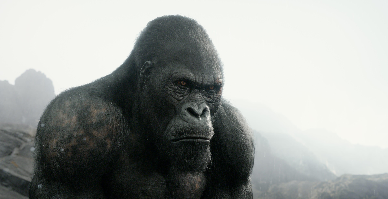 Tarzan creature fx pipelines fxguide - Tarzan gorille ...