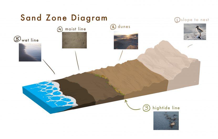 piper-sand-zones